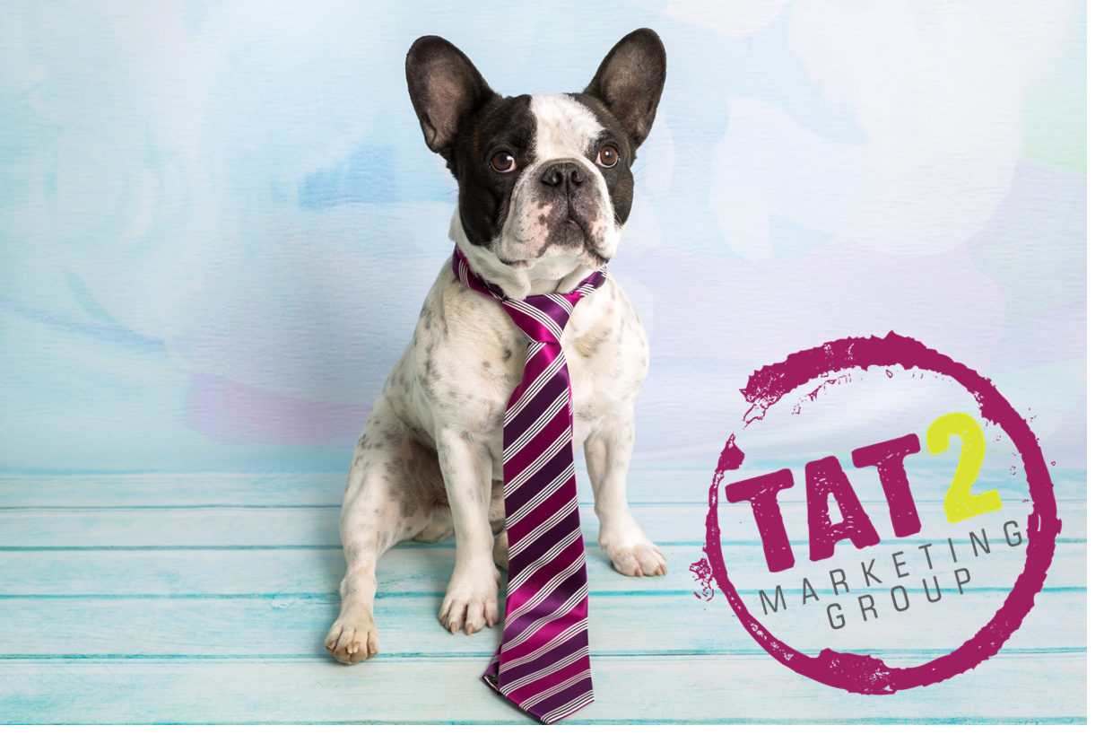 Dog and tie